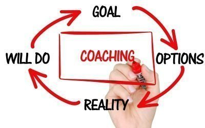 Small Business Coach